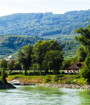 Natur erleben in der Wachau