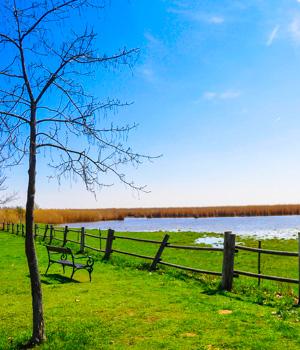 Natur genießen im Urlaub im Neusiedler See