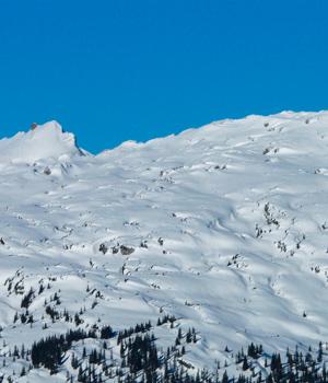 Natur genießen im Wanderurlaub in den Kitzbüheler Alpen