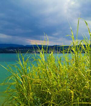 Natur genießen im Wanderurlaub in der Schweiz