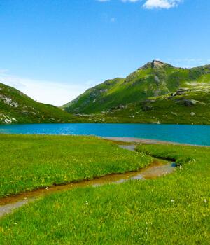 Wanderurlaub für die Gesundheit in der Schweiz