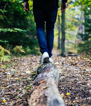 Wanderurlaub im Waldviertel für die Gesundheit