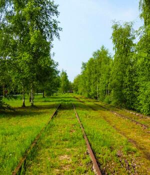 Wanderurlaub in den Wäldern in Essen