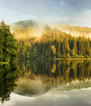 Schöne Momente im Harz