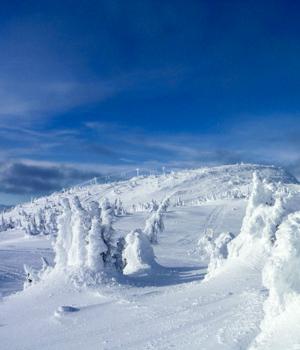 Natur genießen im Skiurlaub in Oberstaufen