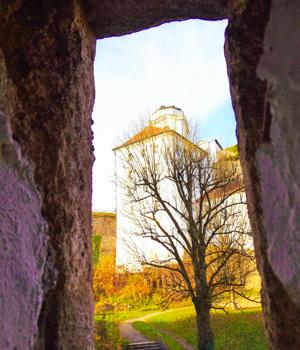 Natur genießen während der Städtereise in Passau