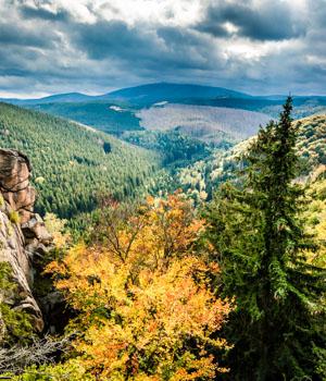 Natur genießen im Wanderurlaub im Harz