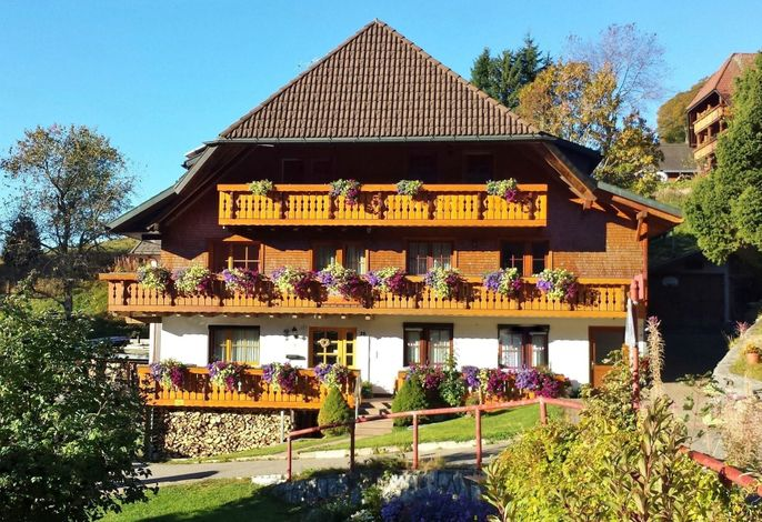 Bühlhof  Todtnauberg Wohnung 2