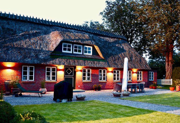Design Reetdach Ferienhaus