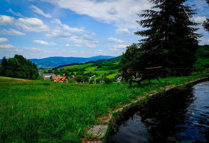 Ferienwohnung Sonnenaufgang - Maierhof in Oberried (Bauernhof, Wandern im Schwarzwald)
