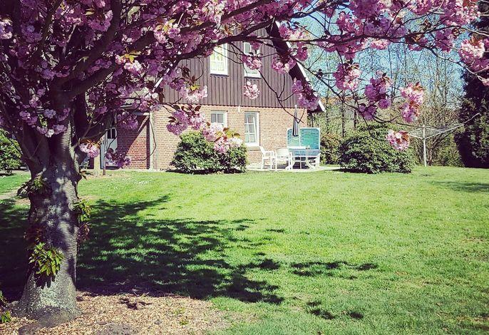 Appartement 2 Einzelzimmer Altes Land Jork bei HH