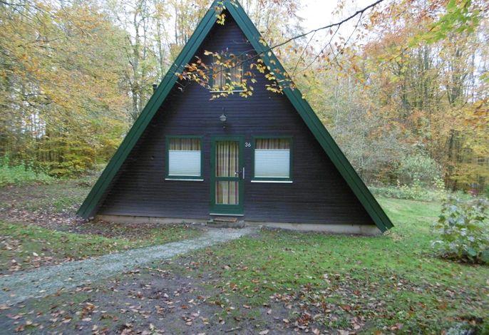 Ferienhaus im Ferienpark am Twistesee