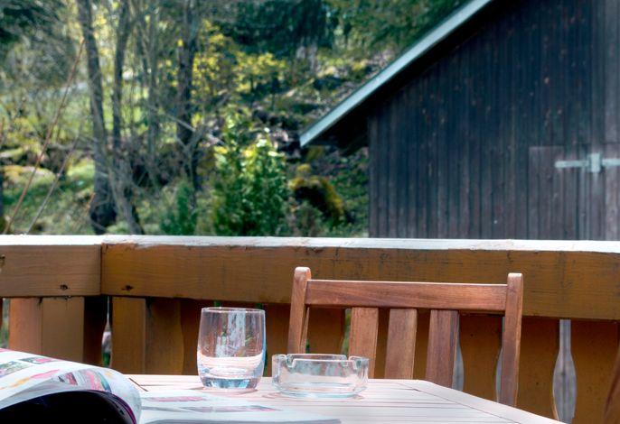 Haus Tanneck - FeWo 4 - Feldberg im Schwarzwald