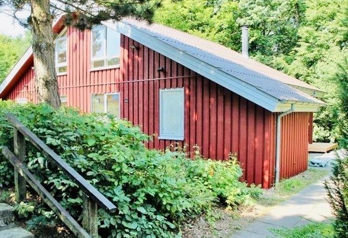 Komfort-Ferienhaus - Extertal Ferienpark - Entspannung, Natur, Wald, Familie #51