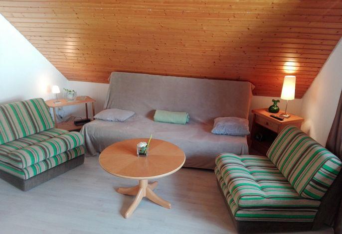 Ferienwohnung auf 1233m direkt am Feldberg, vorm Skilift und Skipiste