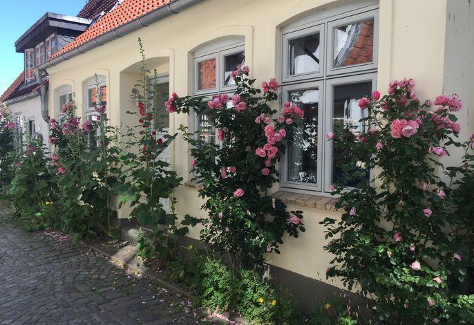 Jules Altstadthaus