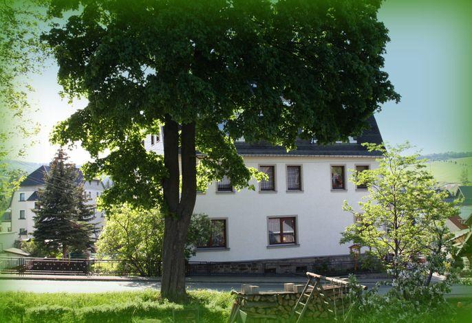 Große Ferienwohnung Ebert&Green