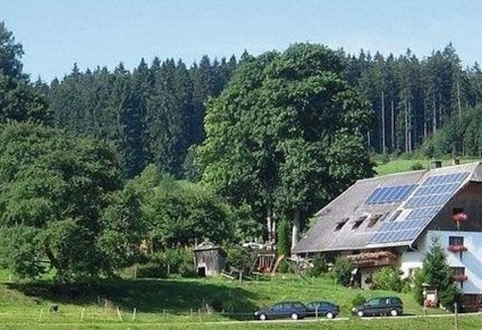 Ferienhof Gerda - Ferienwohnung Sternenhimmel