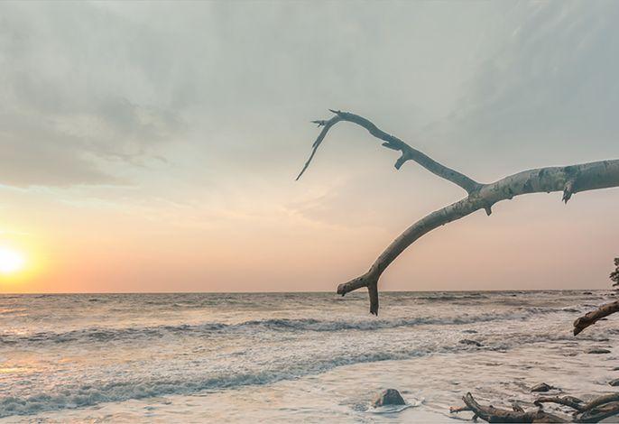 Meeresrauschen - direkt am Meer