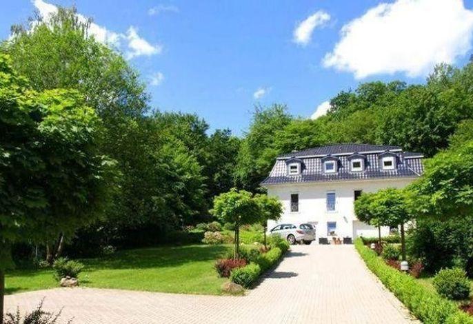 Weißes Haus am Kurpark, Fewo Waldblick