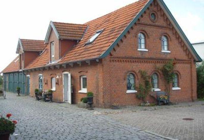 Terrasse / Liegewiese