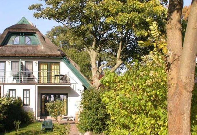 17f Moosbeere Gartenteil und Terrasse