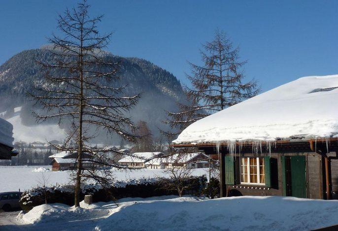 Aussicht Winter (1)