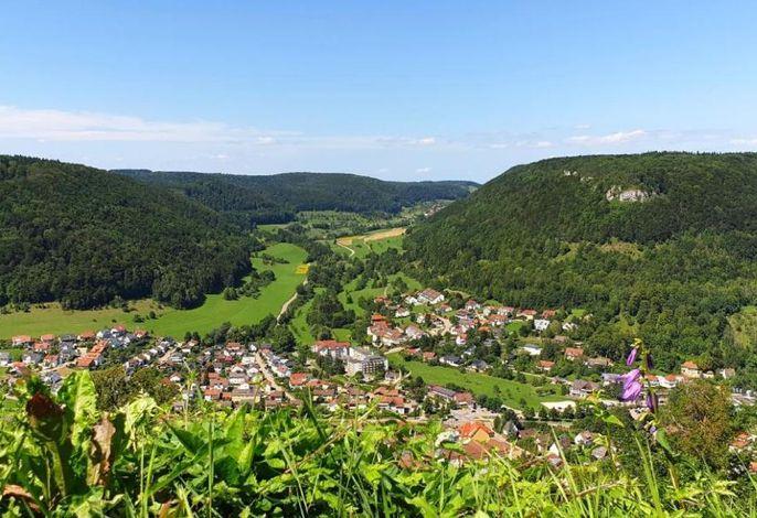 Blick von der Hiltenburg auf unsere Ferienwohnung