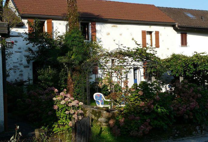 Garten mit Kiwilaube