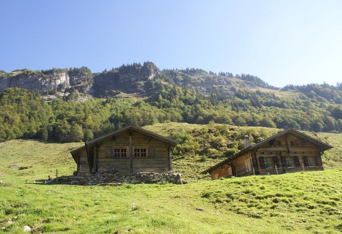 Alphütte Gental - Haus links