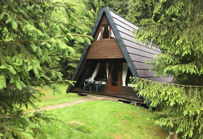 Die Ferienhäuser stehen mitten im der Natur