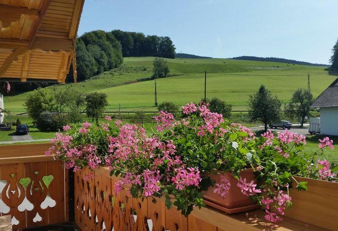 Blick vom südseitigen Balkon