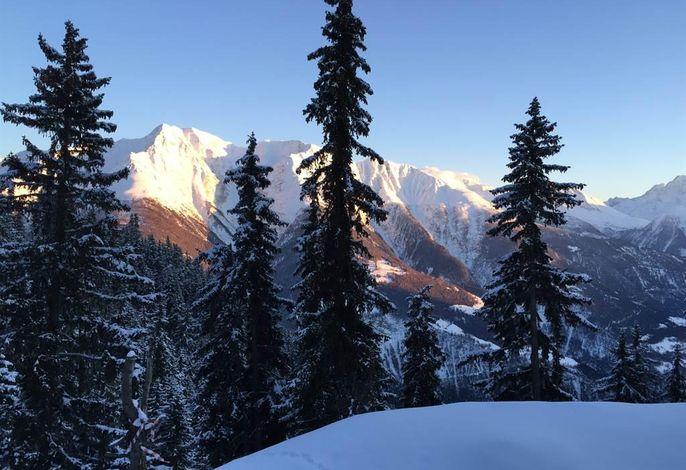 Blick von Terrasse auf Walliser Berge