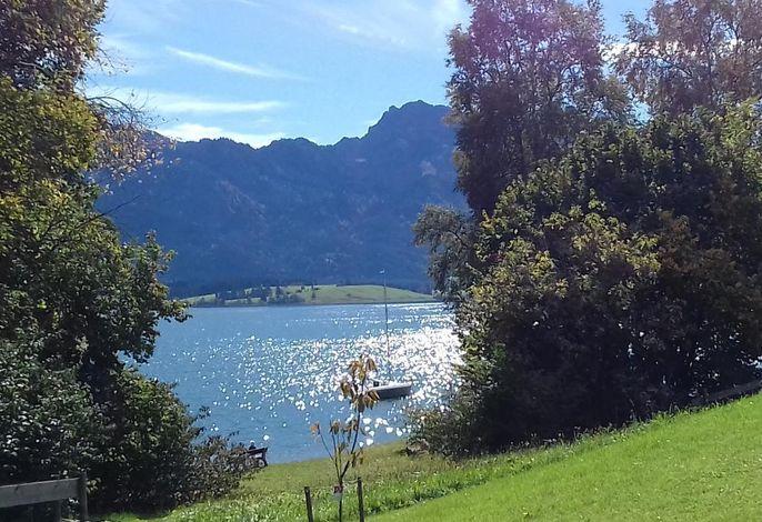 SEE-Idyll: der private Liegestuhl am See erwartet Sie