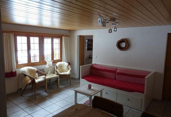Wohnraum mit Sofa und TV