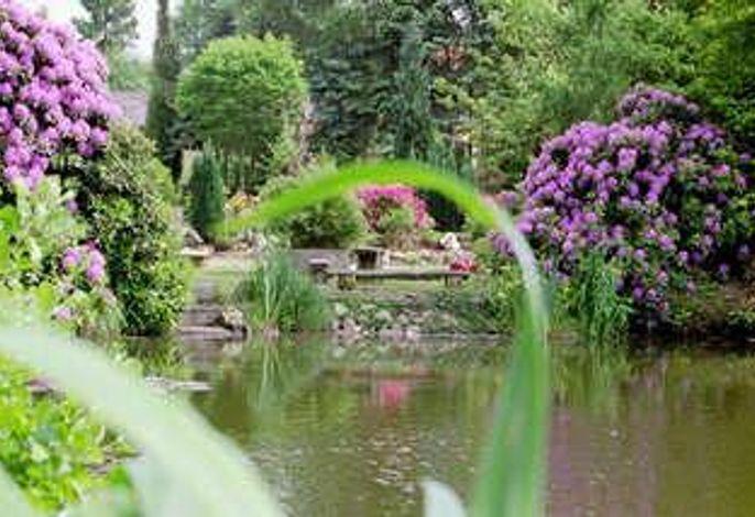 Blick über den Teich.