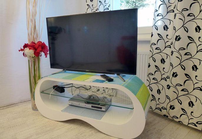 40 LCD-TV und DVD-Player.