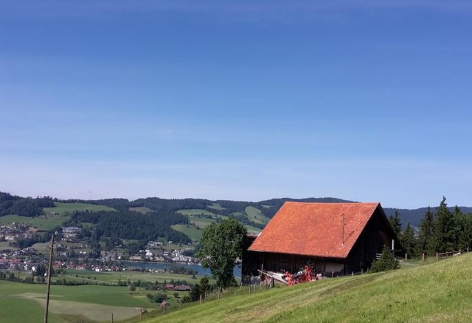 Frühalp-Hütte auf der Alm