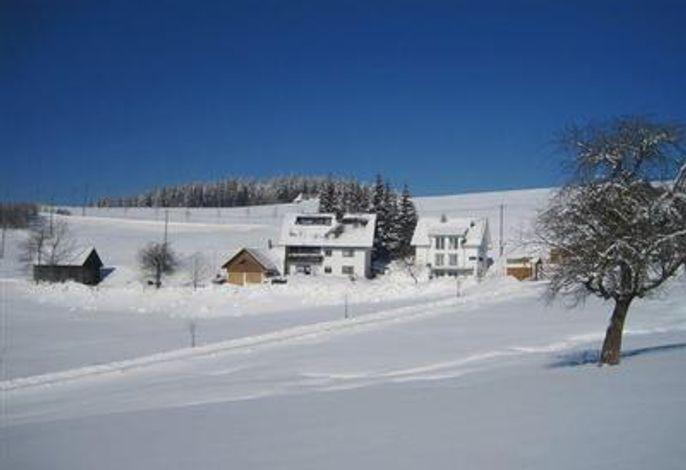 Winteridylle: unser Haus direkt im Ski- und Wandergebiet