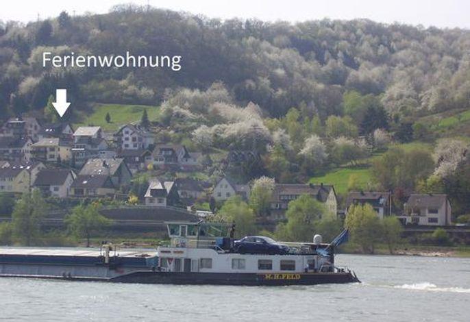 Sicht vom Rhein aus