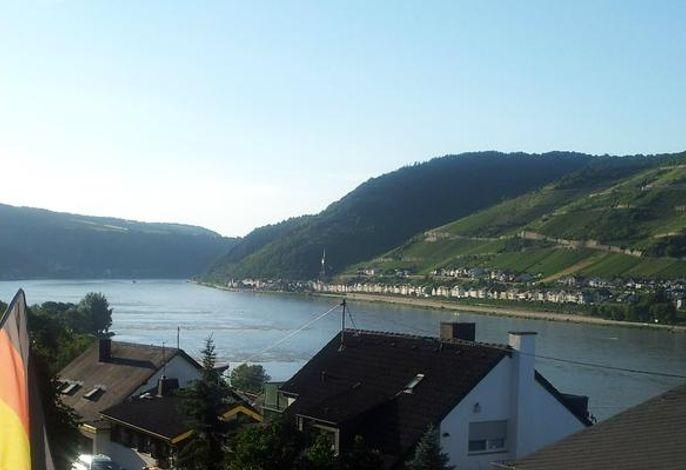 Sicht auf den Rhein