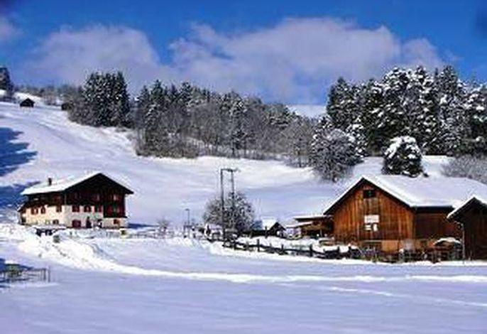 Ferienwohnung Schiesser, Winter, Masein