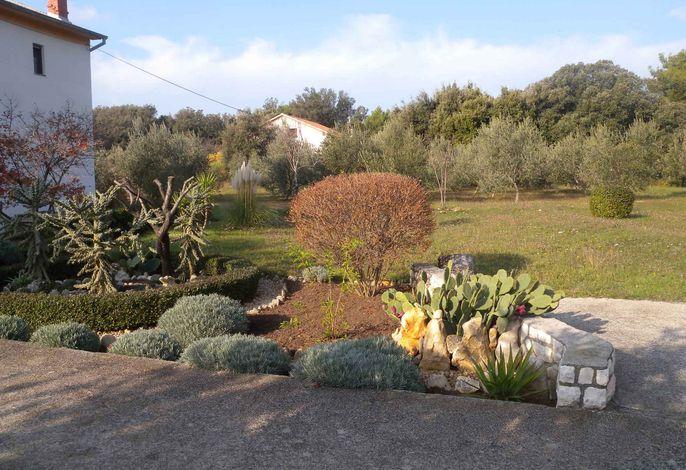 Ferienwohnung mit 50 qm Terrasse