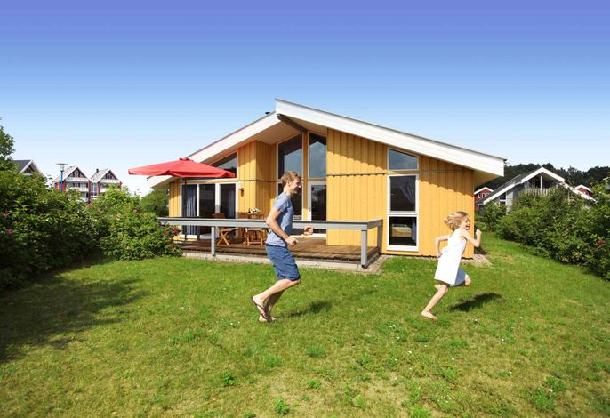 Ferienhaus Comfort mit Sauna und Terrasse