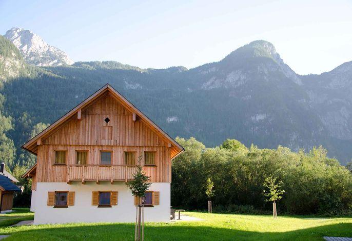 Ferienhaus mit Hallenbad, Wellness, Kinderspielplatz und eigener Sauna im Feriendorf