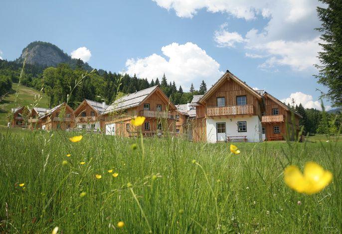Ferienhaus mit Geschirrspüler und Internetzugang direkt an der Piste