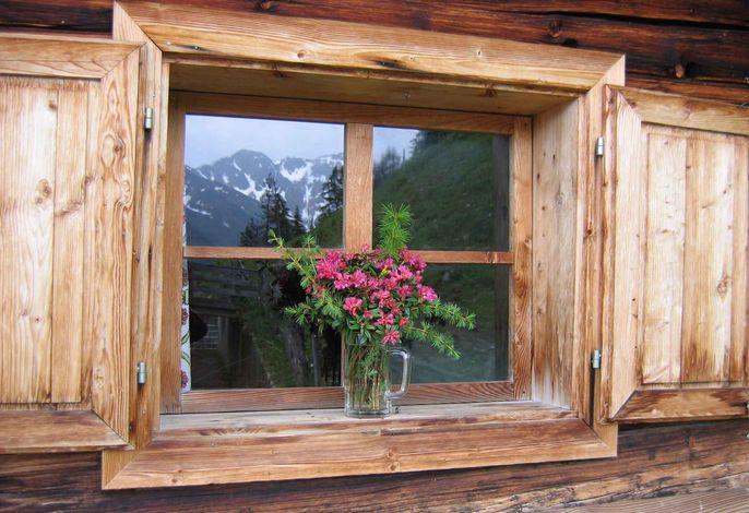 Ferienwohnung mit Balkon und Hallenbad