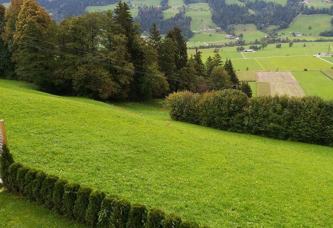 Ferienwohnung mit großem Garten und wundervollem Ausblick