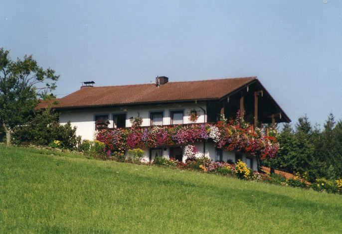 Haus Baumgartner, Hausansicht