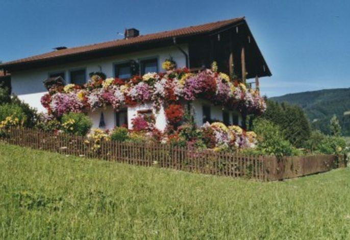 Haus Baumgartner - Ferienwohung